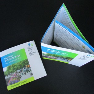 Local Enterprise Office (LEO) Limerick & Limerick City Enterprise Board (LCEB) – Print Design