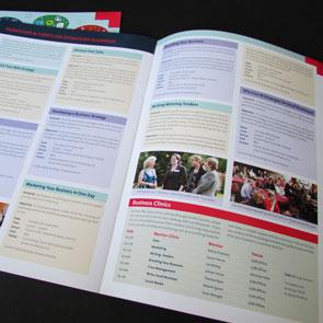 Local Enterprise Office (LEO) Limerick & Limerick City Enterprise Board (LCEB) – Print Design