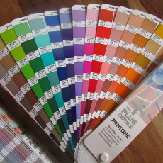 Did you know that Pantone have recently added 112 New colours in eight inspiring colour ranges?